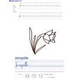 Imprimer l'exercice d'écriture sur la jonquille