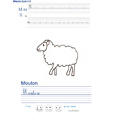 Exercice d'écriture sur le mouton