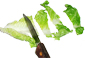 couper la salade