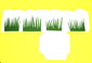 herbe collée