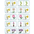 Dominos fleurs planche 12