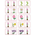 Dominos fleurs planche 13