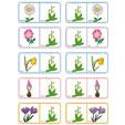 Dominos fleurs planche 14