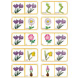 Dominos fleurs planche 15