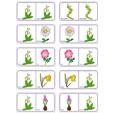 Dominos fleurs planche 16