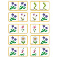 Dominos fleurs planche 3