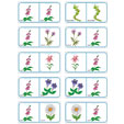 Dominos fleurs planche 5