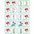 Dominos fleurs planche 6