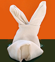 Ecarter les oreilles du lapin serviette