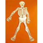 squelette terminé