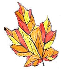 Coloriages de feuilles graphiques