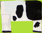 peindre la vache