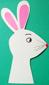 tête du lapin