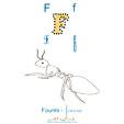 Lettre F de fourmi