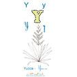 Lettre Y de Yucca