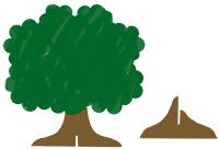 Peindre l'arbre généalogique
