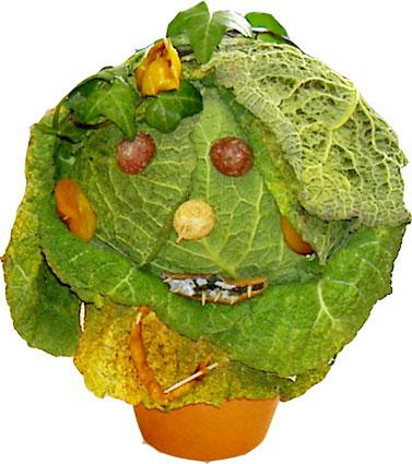 Bonhomme légume Arcimboldo - légumes d'Arcimboldo