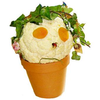 Tête légume Arcimboldo - légumes d'Arcimboldo