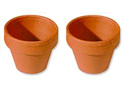 2 pots de terre de même taille