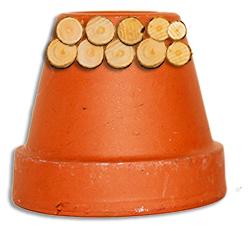 Coller des rondelles de bois