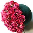 planter les roses