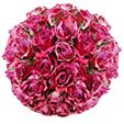 Roses piquées dans la boule