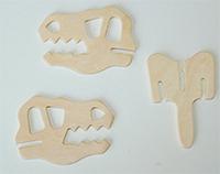 Pièces de la tête du dinosaure