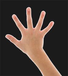 Presser la main sur la feuille noire