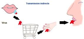 transmission grippe