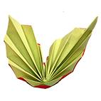 Pliage de serviette en deux grandes ailes