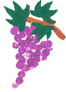 Dessiner la branche de vigne