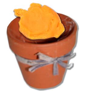 Placer une boule de pâte à modeler dans le pot