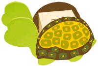 Faire les détail de la carapace de la  tirelire tortue