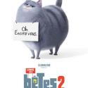 En juillet 2019, retrouvez la suite des aventures de nos animaux domestiques préférés ! Comme des bêtes 2. Retrouvez la bande annonce et des infos sur ce film.