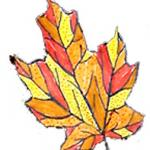 Coloriages de feuilles graphiques à imprimer pour les enfants