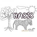 Habib, coloriages Habib
