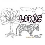 Loric, coloriages Loric