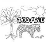 Zidane, coloriages Zidane