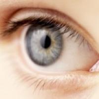 rétine de l'oeil