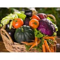 Aliments bon pour le système immunitaire