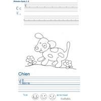 Pages d'écriture primaire