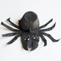 Araignée à faire trembler