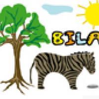 Activités sur le prénom Bilal