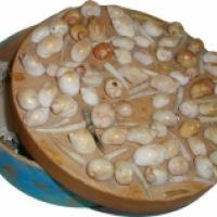 Fabriquer une boîte décorée de coquillages