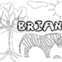 Activités sur le prénom Brian