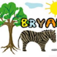 Activités sur le prénom Bryan
