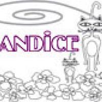 Activités sur le prénom Candice