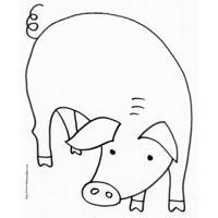 Coloriage du cochon