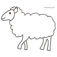 Coloriage Du Mouton Mouton Sur Tête à Modeler