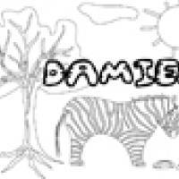 Activités sur le prénom Damien
